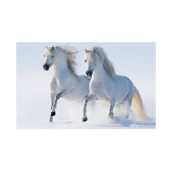 Horses Deepener